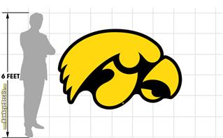 Iowa Hawkeyes Tigerhawk Gold on Black 74x48 inch Huge Fabric Wall Skin