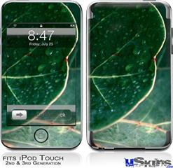 iPod Touch 2G & 3G Skin - Leaves