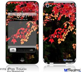 iPod Touch 4G Decal Style Vinyl Skin - Leaves Are Changing