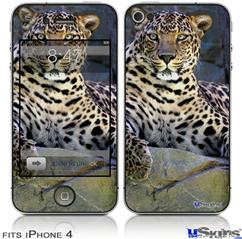 iPhone 4 Decal Style Vinyl Skin - Leopard Cropped (DOES NOT fit newer iPhone 4S)