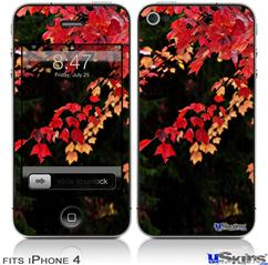 iPhone 4 Decal Style Vinyl Skin - Leaves Are Changing (DOES NOT fit newer iPhone 4S)