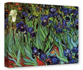 Gallery Wrapped 11x14x1.5  Canvas Art - Vincent Van Gogh Irises