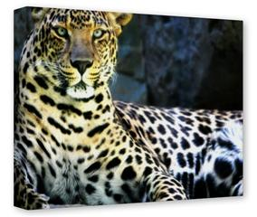 Gallery Wrapped 11x14x1.5 Canvas Art - Leopard