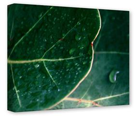 Gallery Wrapped 11x14x1.5  Canvas Art - Leaves